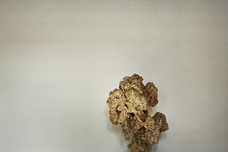 olivier brossard - JADE02-24